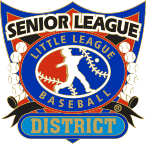 "1 1/4"" Senior League District Baseball Pin-2809"