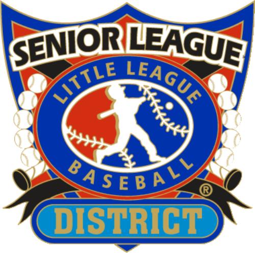 "1 1/4"" Senior League District Baseball Pin-2809"