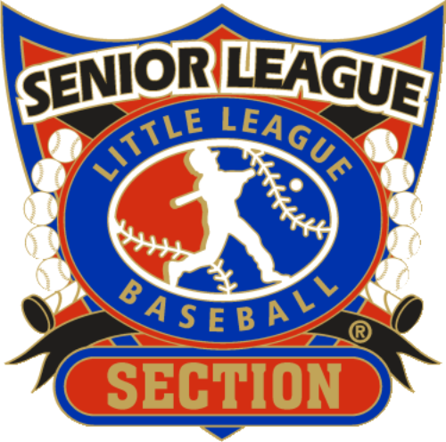 "1 1/4"" Senior League Section Baseball Pin-2810"