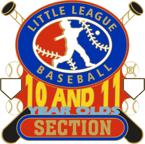 "1 1/4"" 10-11 Section Baseball Pin-2794"