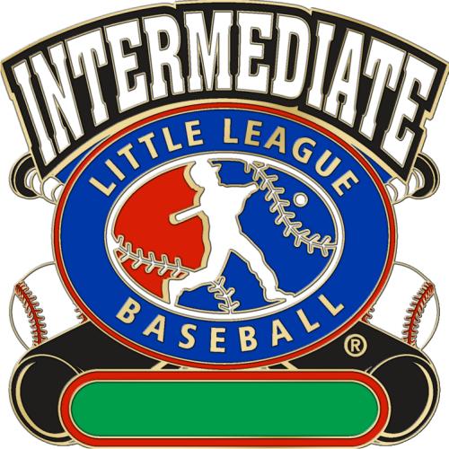 "1 1/4"" Intermediate All Purpose Baseball Pin-2824"