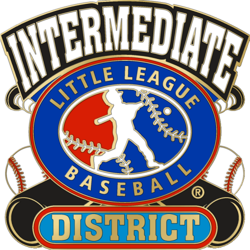 "1 1/4"" Intermediate District Baseball Pin-2825"