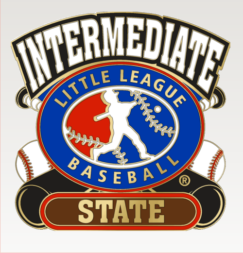 "1 1/4"" Intermediate State Baseball Pin-2827"