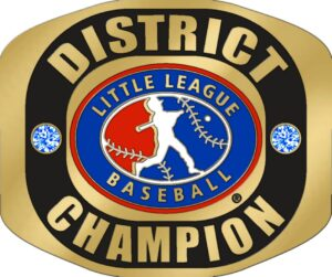 "Little League DISTRICT CHAMPION Ring with Little League Logo. Comes with 25"" Chain and Velvet Pouch. Size 10-3128"