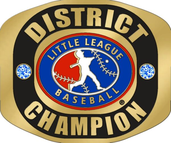 """Little League DISTRICT CHAMPION Ring with Little League Logo. Comes with 25"""" Chain and Velvet Pouch. Size 10-3128"""