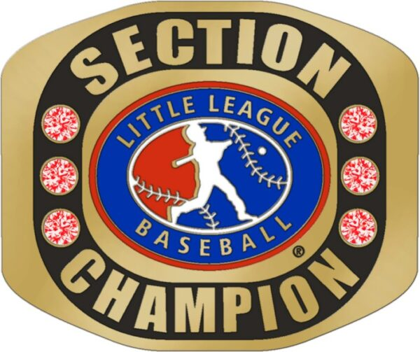 "Little League SECTION CHAMPION Baseball Ring with Little League Logo. Comes with 25"" Chain and Velvet Pouch. size 10-3167"